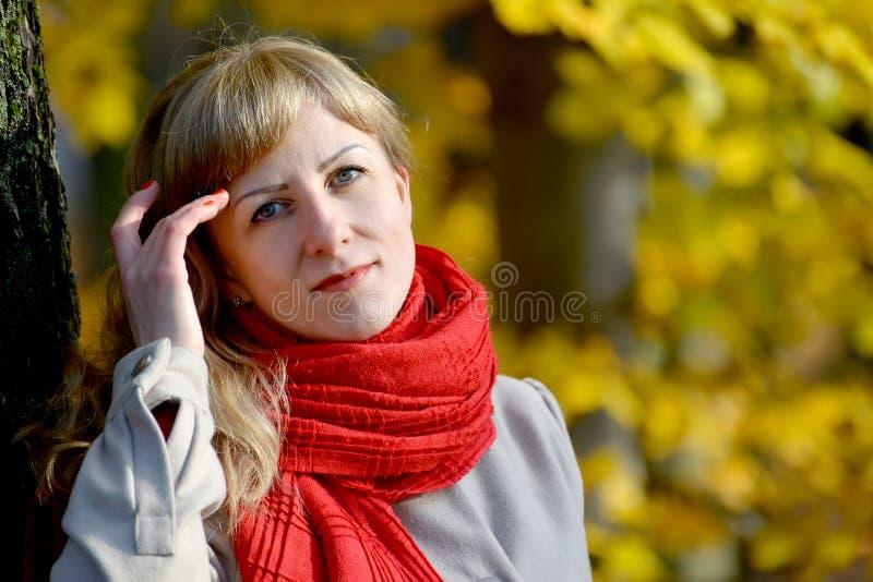 快乐的少妇的画象有一条红色围巾的关于头的一只手以秋天树为背景 免版税库存图片