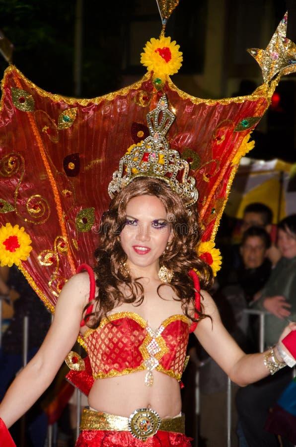 快乐gras mardi游行参与者悉尼 免版税库存照片