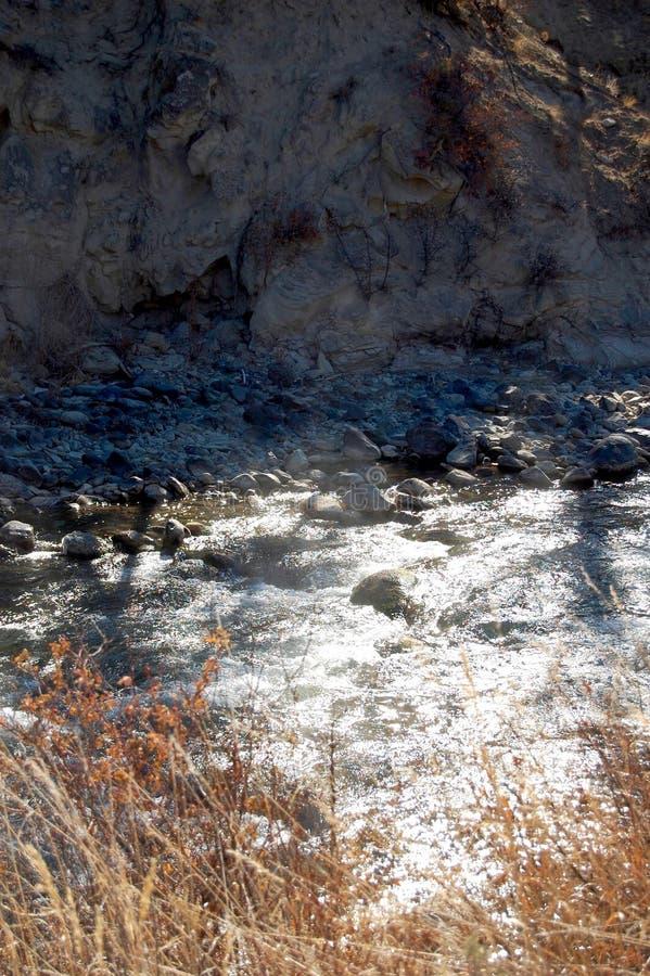 快速地移动浅小河的坚固性急流 免版税库存照片