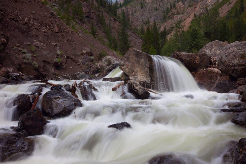 Download 快速山河流水 库存图片. 图片 包括有 环境, 岩石, 俄国, 森林, beautifuler, 春天, 迅速 - 15698393