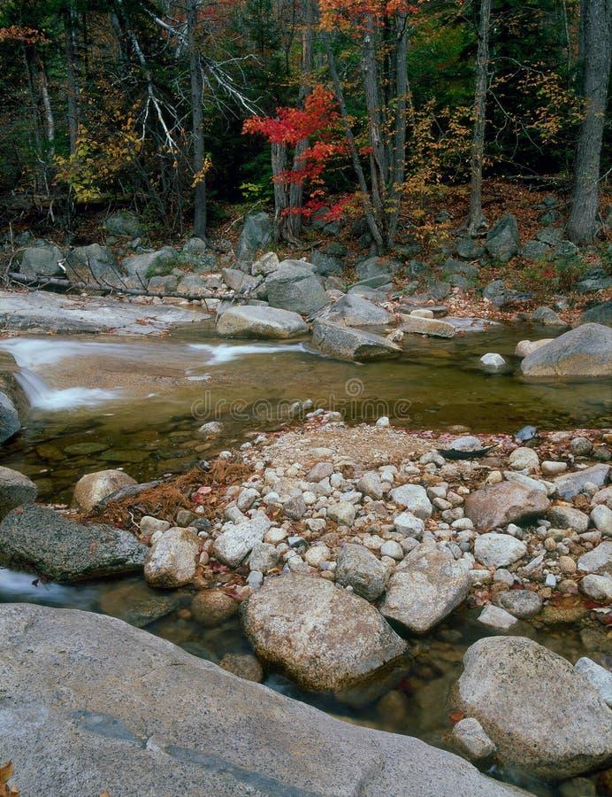 快速河,白色山国家森林,新罕布什尔 库存照片