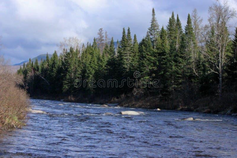 快速流动的河在佛蒙特,美国 免版税库存照片