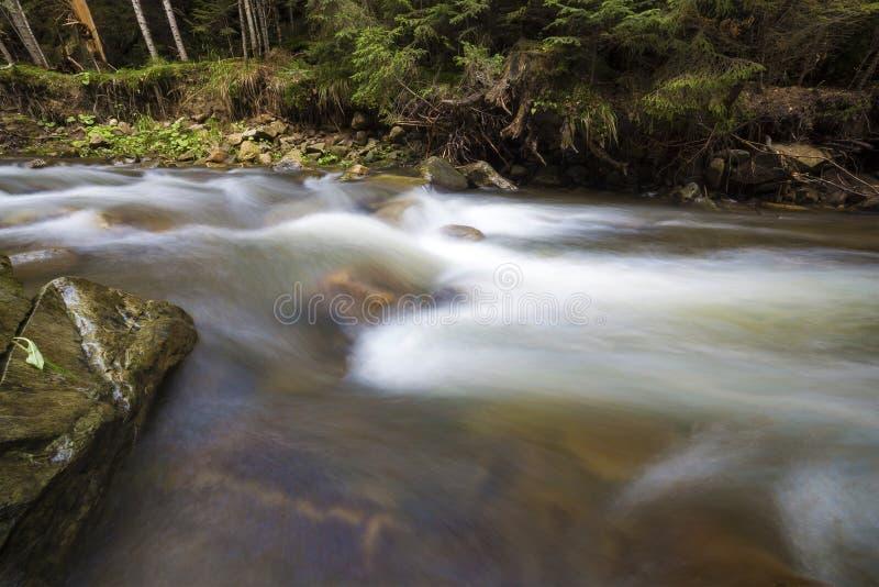 快速流动的通过狂放的绿色森林河用落从在美丽的大湿石头的透明的光滑的柔滑的水 库存照片