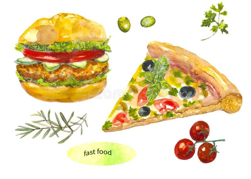 插画 包括有 膳食, 绿色, 汉堡包, 小圆面包, 绘画, 现有量, 艺术图片