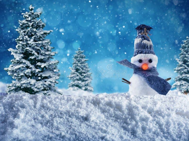 快活的xmas的雪人 库存照片
