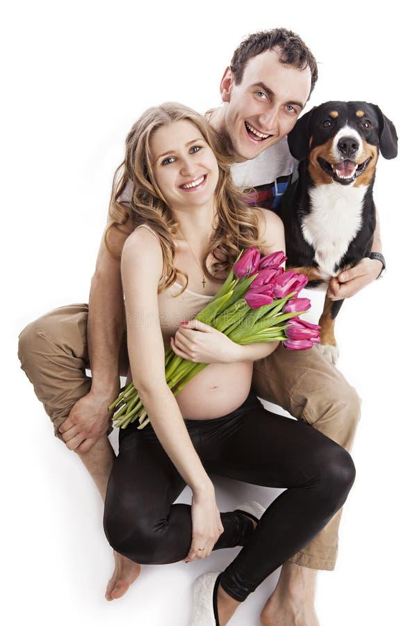 怀孕的夫妇和Entlebucher Sennenhund狗 免版税图库摄影