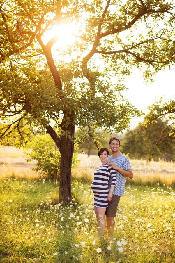 怀孕的夫妇 免版税图库摄影