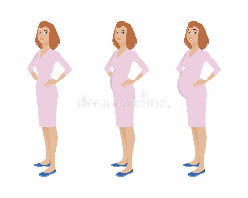 怀孕的女孩阶段 库存例证