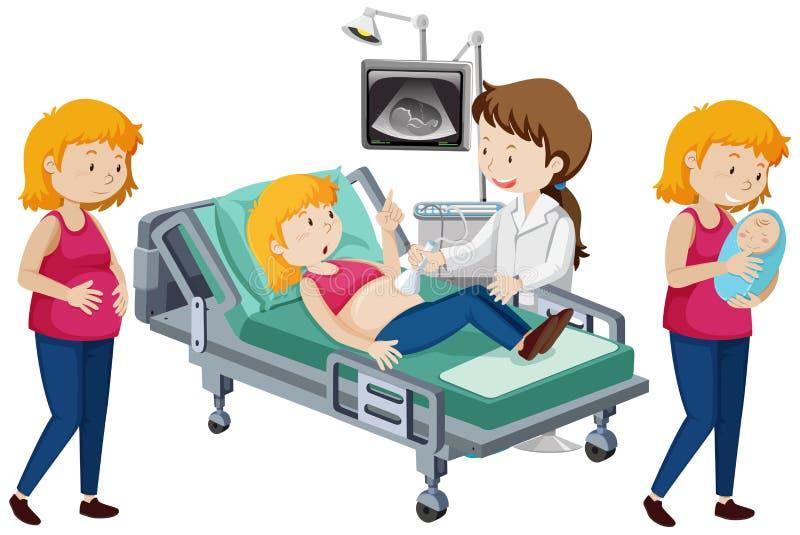 怀孕的进步传染媒介  库存例证