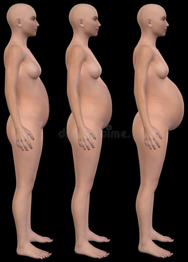 怀孕,怀孕,婴孩,演出Illustraton 库存例证