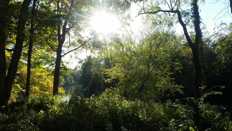 怀特河 库存照片