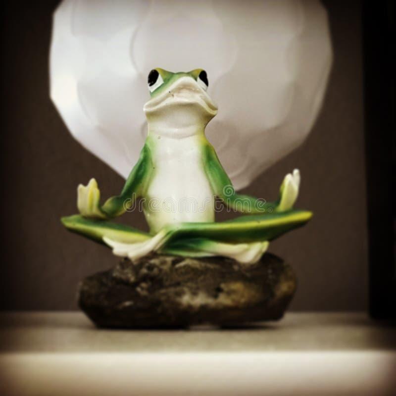 思考的青蛙 免版税库存图片