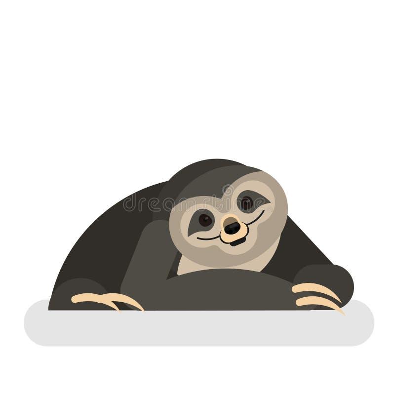 怠惰动物 一个逗人喜爱的滑稽的密林生物 皇族释放例证