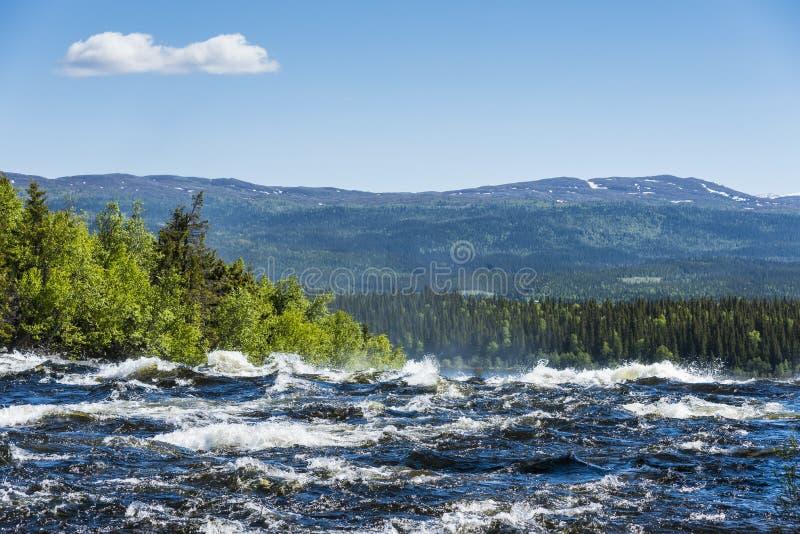 急流Tannforsen瀑布瑞典 免版税库存照片