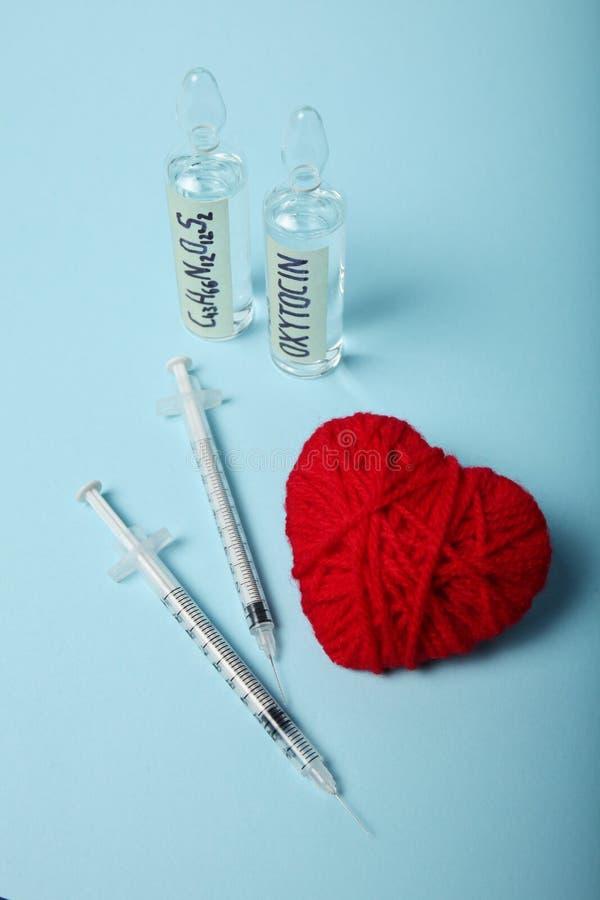 性别和爱,在身体的催产素激素 怀孕的概念 免版税库存照片