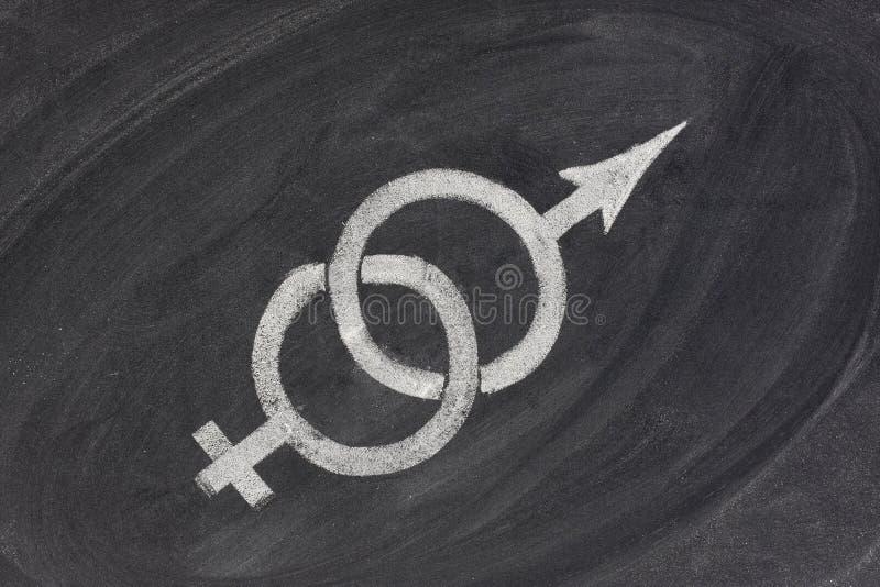 性别婚姻问题关系 免版税库存照片