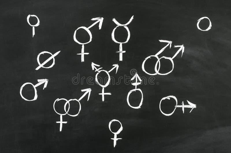 性别的 库存照片
