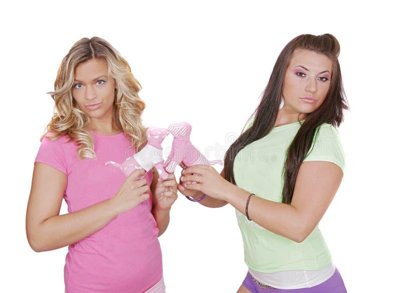 性感的二妇女 库存图片