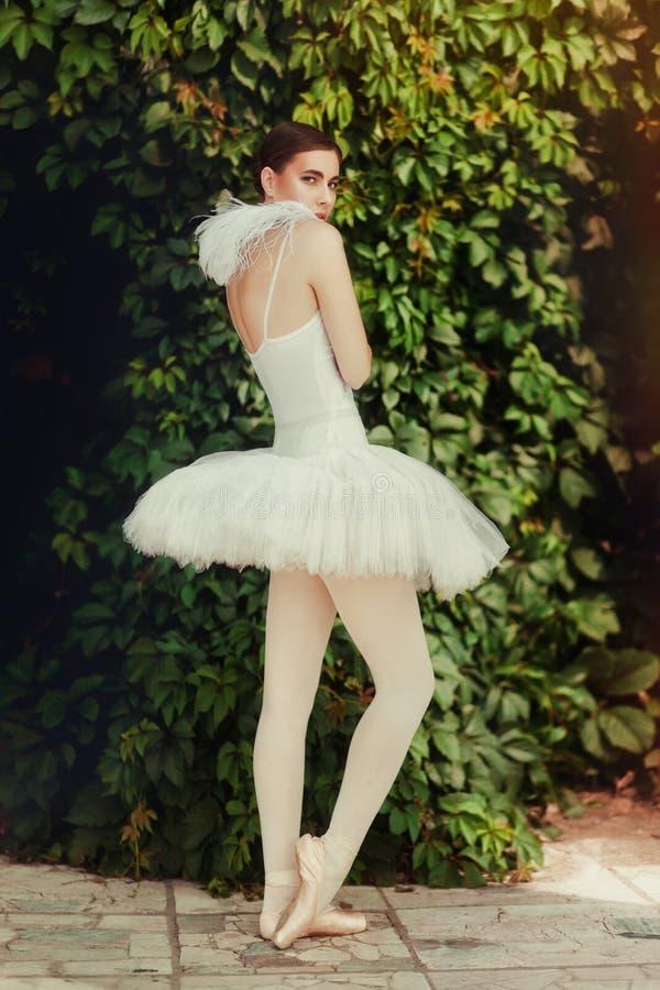 性感的妇女舞蹈家画象在阳光下 免版税库存照片
