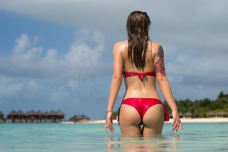 性感的比基尼泳装的美丽的妇女在海滩背景 免版税图库摄影