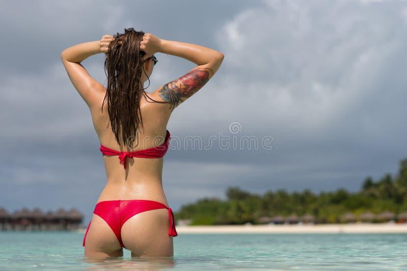 性感的比基尼泳装的美丽的妇女在海滩背景 库存照片