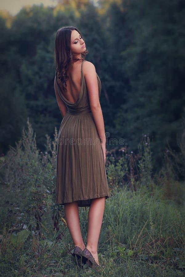 性感的礼服的美丽的妇女 免版税库存照片
