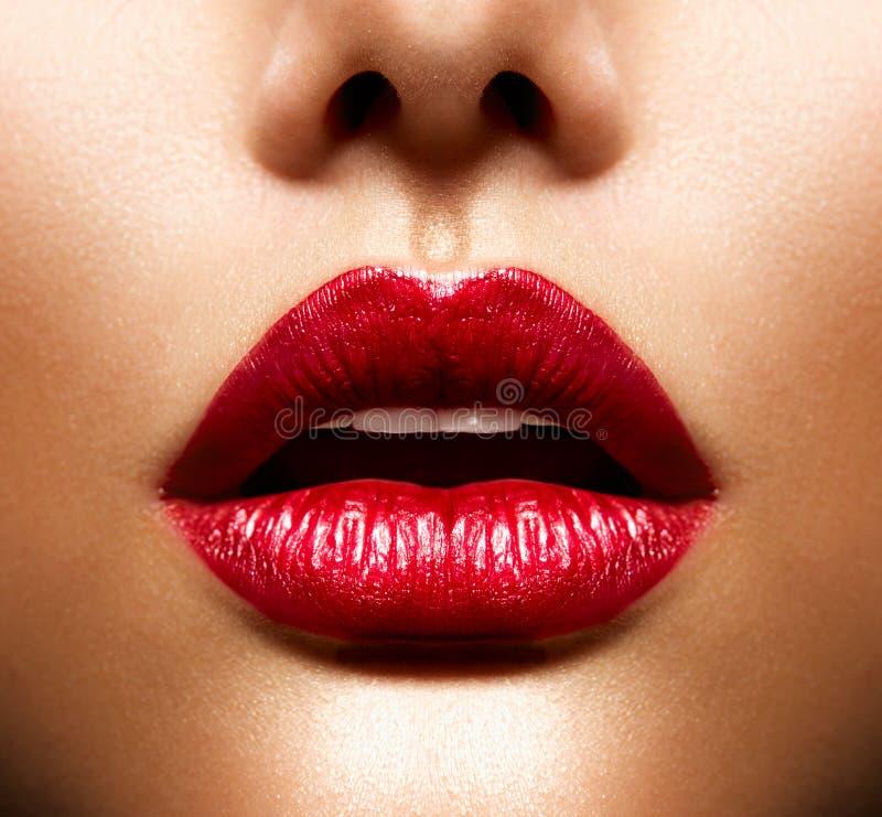 性感的嘴唇 图库摄影