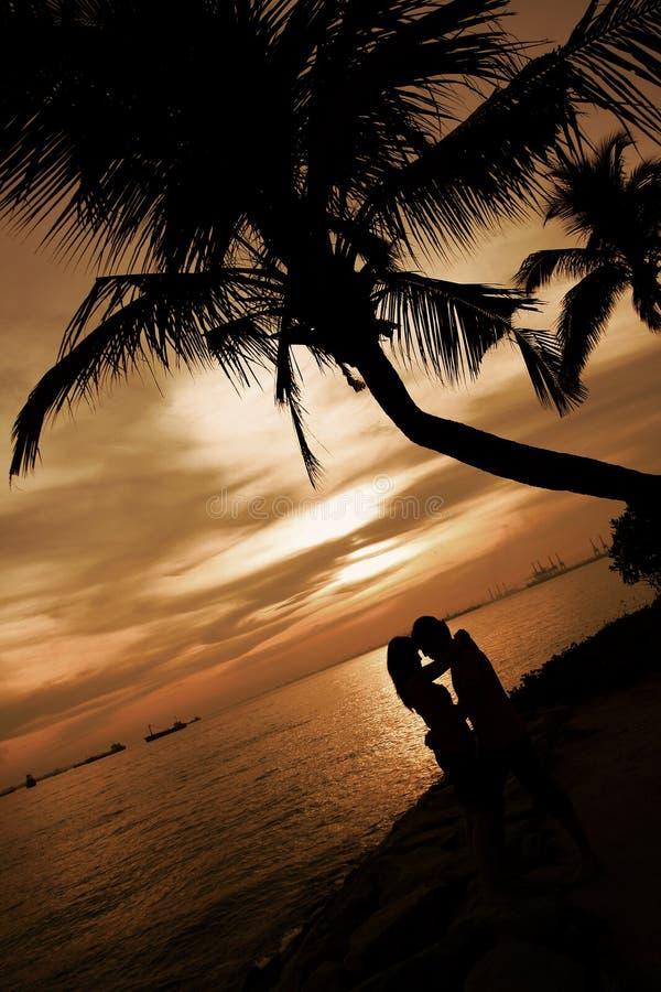 恋人下棕榈树 库存图片