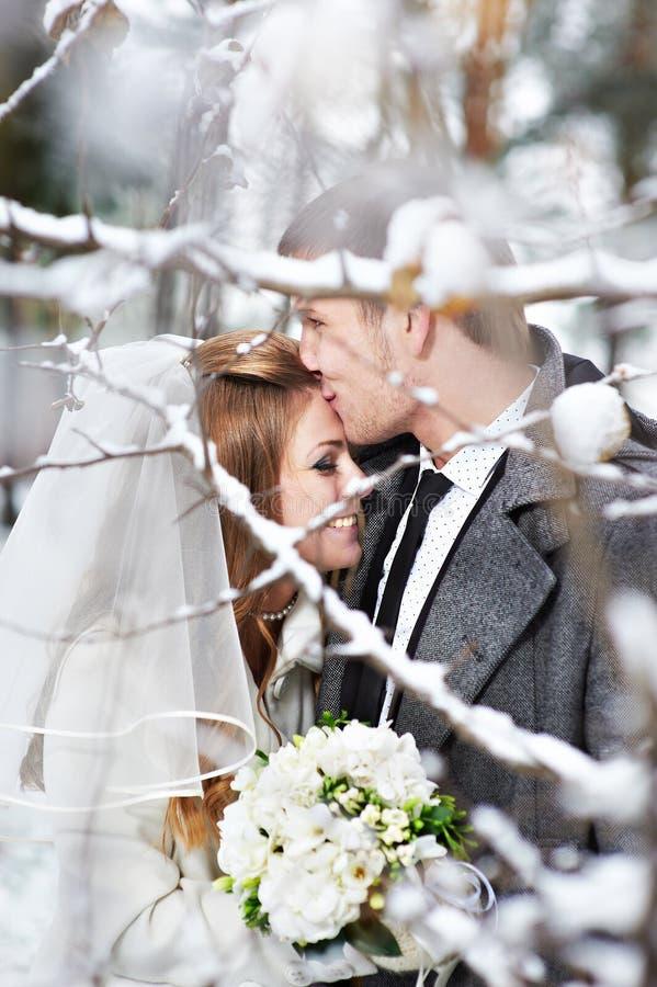 Download 恋人新娘和新郎 库存图片. 图片 包括有 永远, 婚礼, 柔软, 空白, 森林, 室外, 女性, 背包, 一起 - 30337169