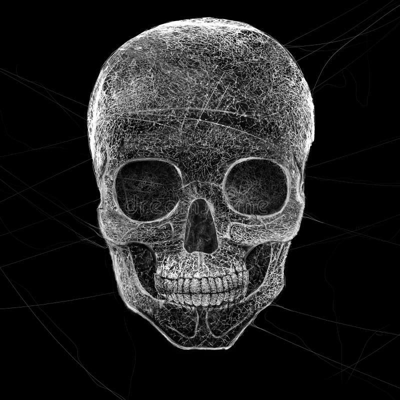 恐怖蜘蛛网头骨 库存图片