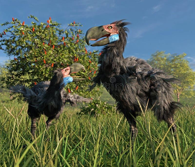 恐怖鸟在沼泽地 向量例证