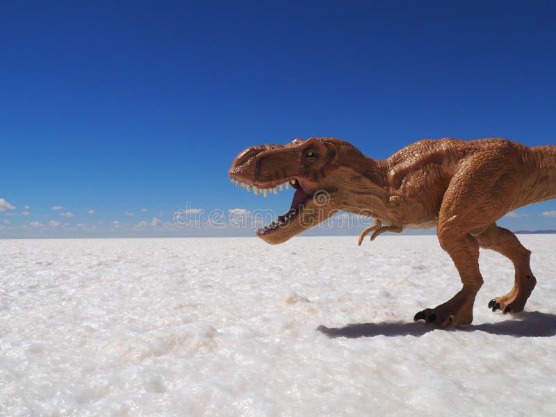 恐龙在撒拉族de Uyuni,玻利维亚 图库摄影