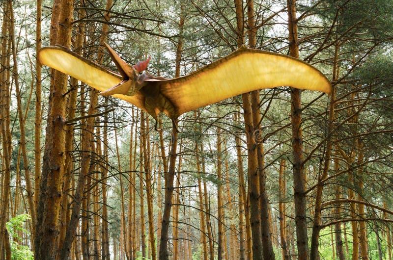 恐龙式样Pteranodon在飞行中在恐龙公园 库存照片