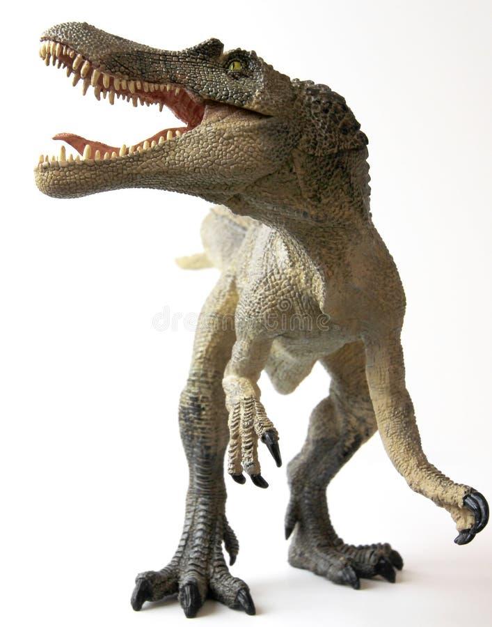 恐龙敞开的下颌spinosaurus 库存照片