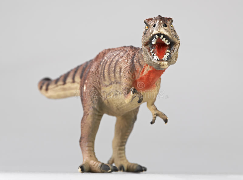 恐龙rex 库存图片