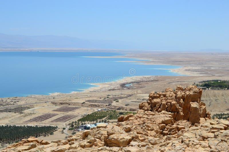 恩戈地、瀑布和绿洲在Judean沙漠,死海,以色列看法  库存图片