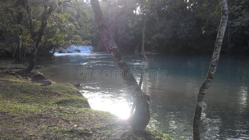 恰帕斯州大海小瀑布 免版税库存照片