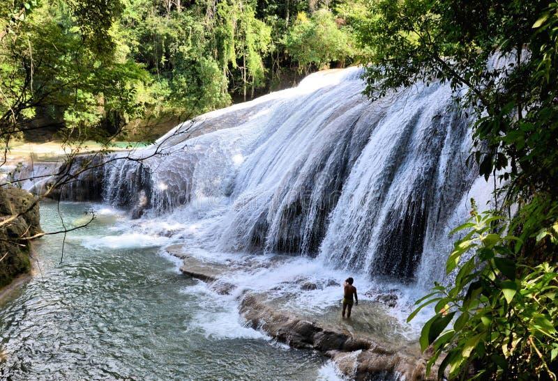 恰帕斯州瀑布 免版税库存图片