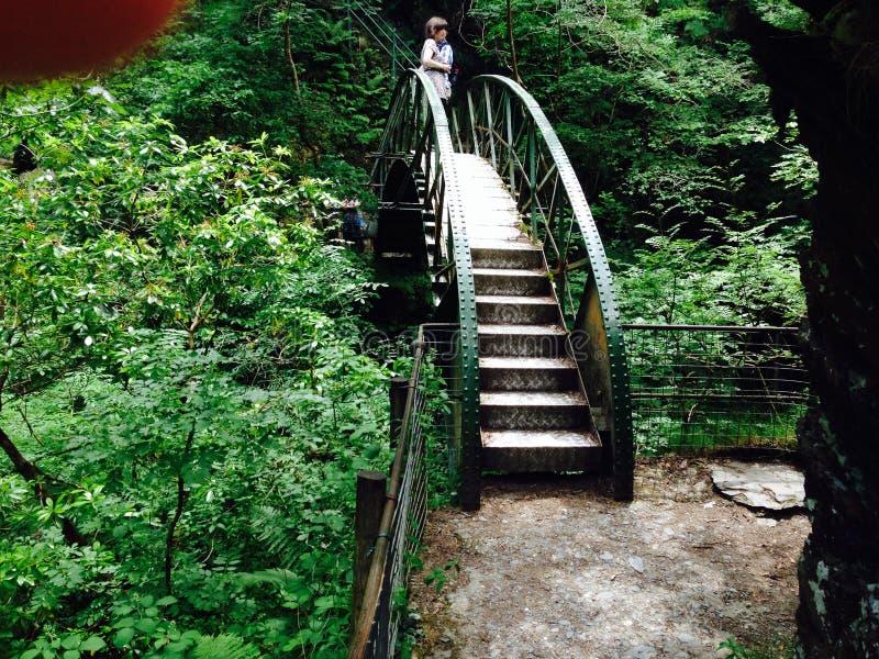 恶魔两桥梁的熊威尔士 免版税库存照片