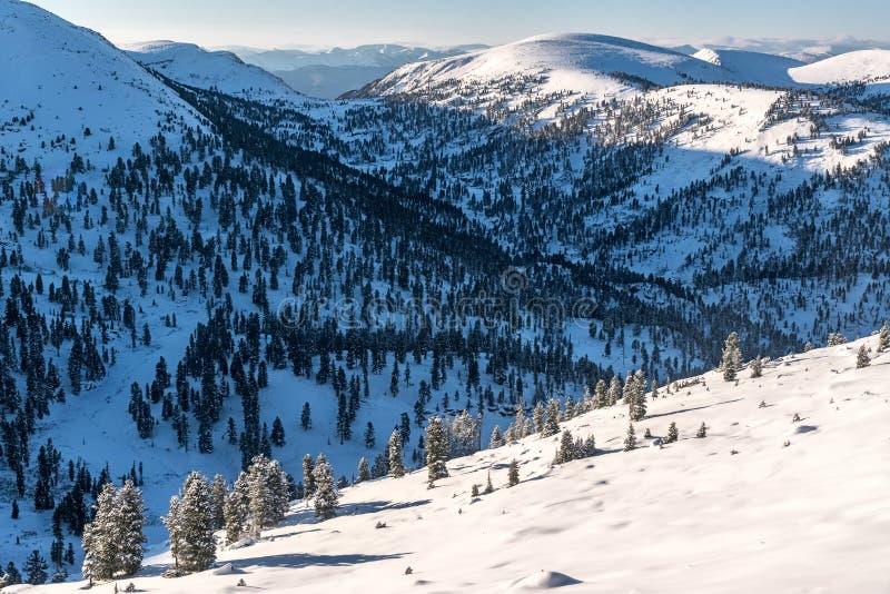 恶魔` s门通行证,西伯利亚冬天的看法在Khamar大坂山的 库存图片