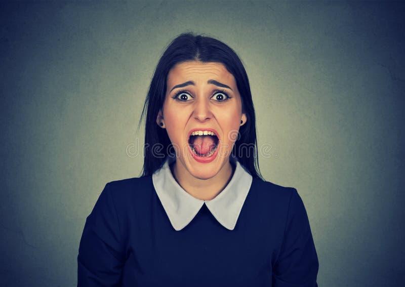 恼怒的妇女尖叫对照相机 库存图片