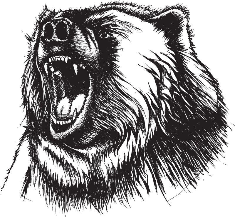 恼怒的熊 库存例证
