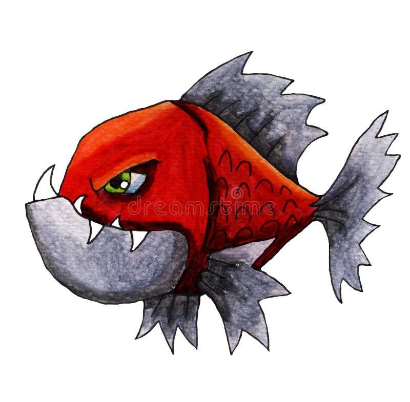 恼怒的红色比拉鱼 库存例证