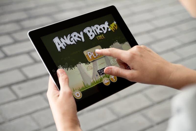 恼怒的苹果鸟ipad2作用 库存照片
