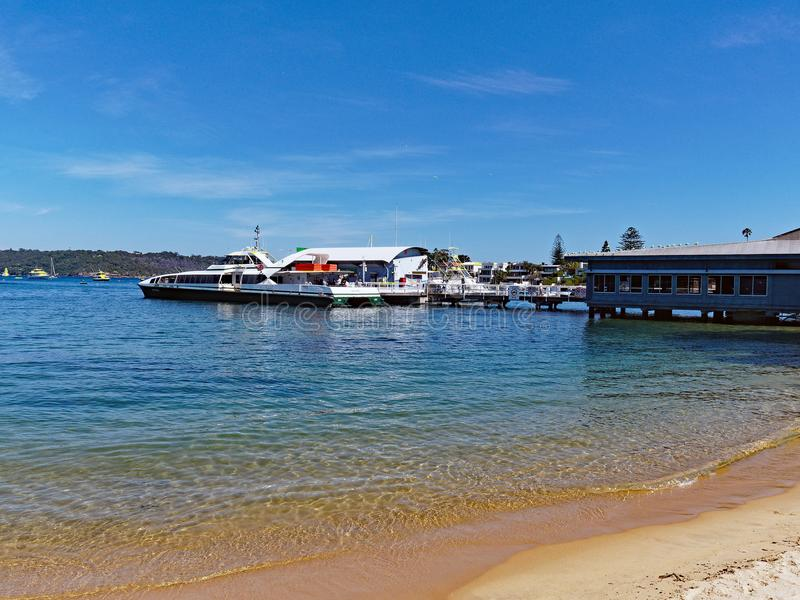 悉尼在Watsons海湾,澳大利亚的港口轮渡 库存图片