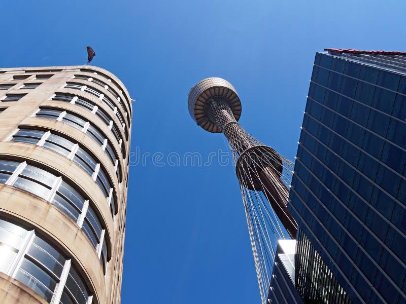 悉尼塔,澳洲 免版税库存图片