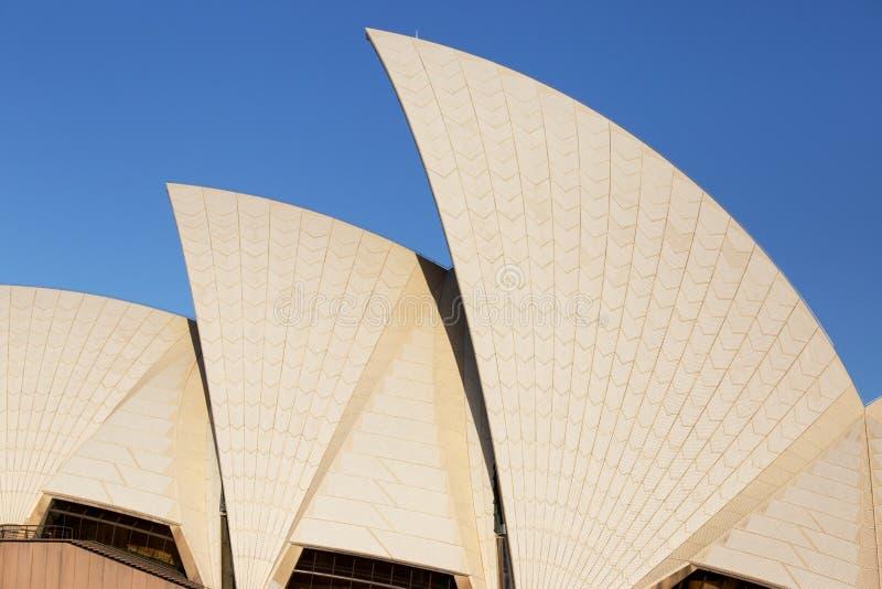 悉尼歌剧院屋顶细节  库存照片