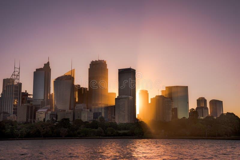 悉尼温暖的轻的城市大厦,有在温暖的日落的太阳射线的 图库摄影