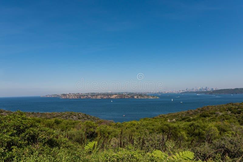 悉尼看法从北部头的,男子气概,澳大利亚 免版税图库摄影