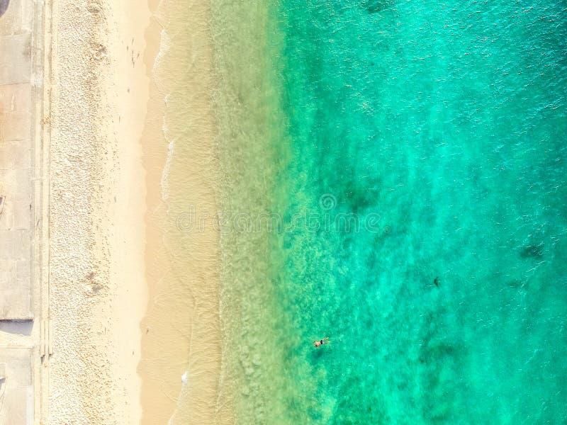 悉尼空中照片-鲨鱼海滩 免版税库存照片